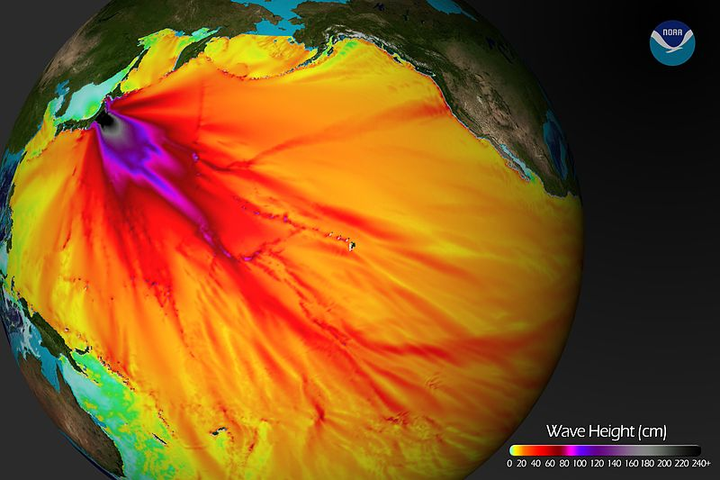 File:2011 tsunami wave height.jpg