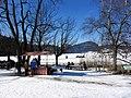2012 'Seegfrörni' - Türlersee - Hausen am Albis 2012-02-18 12-40-30 (SX230).JPG