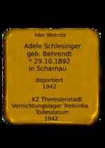 2014.Adele Schlesinger