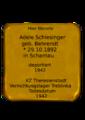 2014.Adele Schlesinger.png