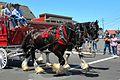 2015July4-Parade062.jpg