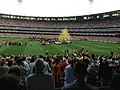 2015 AFL Grand Final confetti.jpg