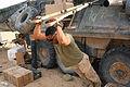 2nd LAR Marines called Afghan desert 'home' DVIDS281703.jpg