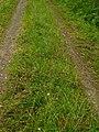 36304 Alsfeld, Germany - panoramio (7).jpg