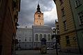 9458viki Dzierżoniów. Foto Barbara Maliszewska.jpg