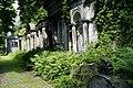 9867viki Cmentarz żydowski na Ślężnej. Foto Barbara Maliszewska.jpg
