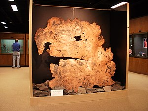 A. E. Seaman Mineral Museum - Large display of sheet copper from the White Pine mine at the museum entrance