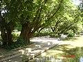 AIT - panoramio - Seksan Phonsuwan (7).jpg