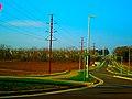 ATC Power Line - panoramio (30).jpg