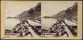 A View from Cold Spring, looking North, by E. & H.T. Anthony (Firm) 2.png