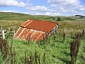 A dilapidated corrugated iron roofed shed - geograph.org.uk - 237026.jpg