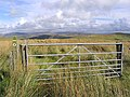 A field gate on Craighope Head - geograph.org.uk - 566521.jpg