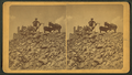 A man and burros at the top of Grey's Peak, from Robert N. Dennis collection of stereoscopic views.png