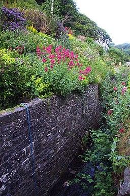 A stream runs through Buck's Mills - geograph.org.uk - 1386990