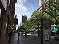 A street in Denver.jpg
