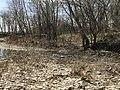A view of a trail trace at Rock Creek Crossing in Council Grove, KS (0ffb0b8762404fa48038521a2475dde2).JPG