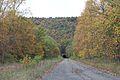Abandoned road.jpg