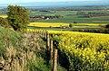 Above East Coates Farm - geograph.org.uk - 419314.jpg