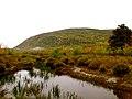 Acadia National Park (8111135364).jpg