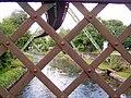 Adlerbrücke 07 ies.jpg