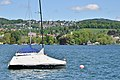 Adlisberg - Wikikon - Weinegg - Zürichhorn - Zürichsee - Wollishofen 2015-05-06 14-30-21.JPG