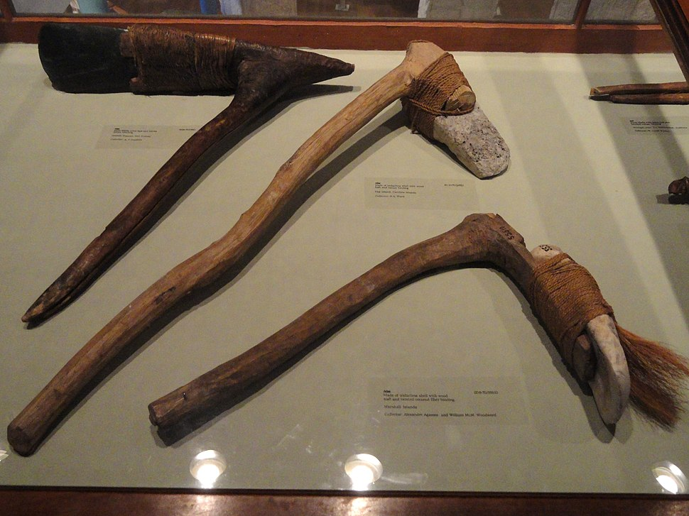 Adzes, Marshall and Yap Islands - Pacific collection - Peabody Museum, Harvard University - DSC05732