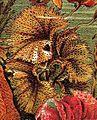 Agarum clathrus Brockhaus 15.jpg