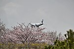 Airbus A319 Aurora Airlines landing in Incheon Airport.jpg