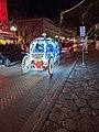 Alamo Texas night cart.jpg