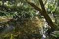 Aldeias e Margens do Rio Ovelha XIX (35804339604).jpg