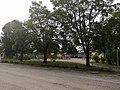 Alexanterin puisto.jpg