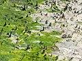 Algal mat in Marine Park (90938)2.jpg