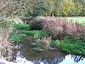 Ampney Brook from road bridge - geograph.org.uk - 1566150.jpg