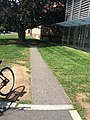 An Unknown Nameless Gravel Path Outside of Cambridge Public Library, MA.jpg