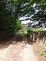 Annicombe - geograph.org.uk - 177236.jpg