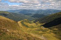 Apshynetskyi Reserve.JPG