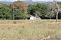 Araguainha - State of Mato Grosso, Brazil - panoramio (1112).jpg