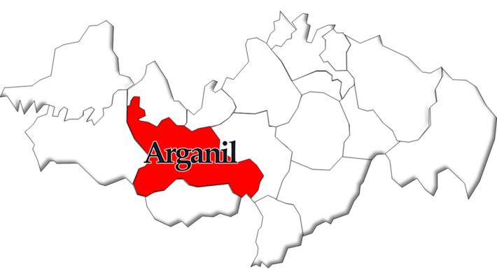 Arganil (parish)
