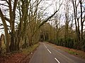 Arrowsmith Road, Merley - geograph.org.uk - 370746.jpg