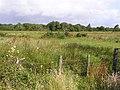 Askill Townland - geograph.org.uk - 1422026.jpg