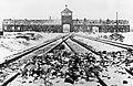 Auschwitz swavesey.jpg