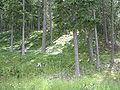 Austria, Alps01.JPG