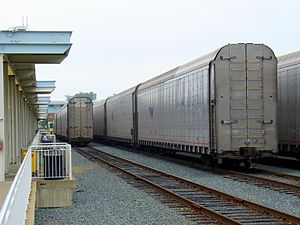 Auto Train - Autoracks lined up at their loading ramps at the Lorton station. The ramps are not visible from this angle.