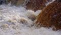 Aysgarth Falls MMB 67.jpg