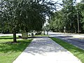 Azalea City Trail 6.jpg
