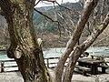 Azusa River 梓川 - panoramio (3).jpg