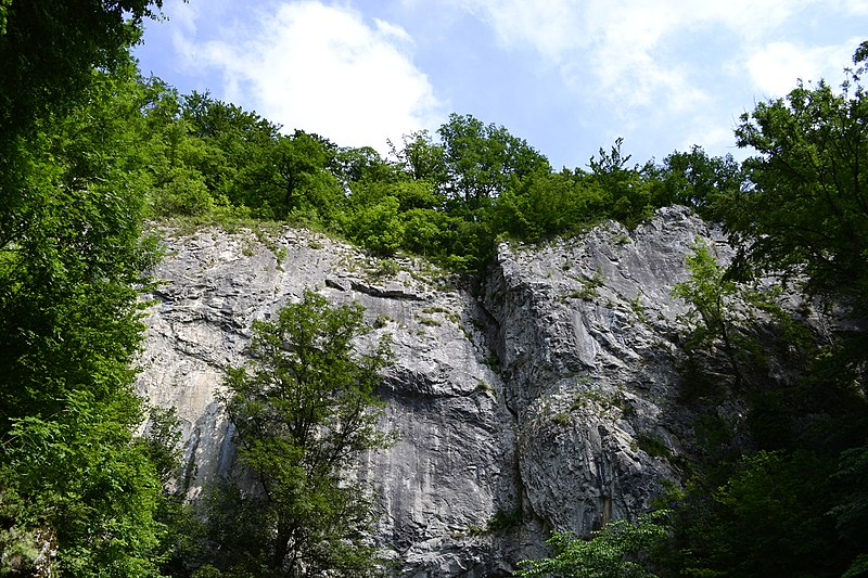 File:Býčí skála - panoramio (1).jpg
