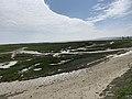 Baie Somme Hourdel - Cayeux-sur-Mer (FR80) - 2021-05-29 - 11.jpg