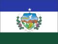 Bandeira Oficial - Natuba-PB.png