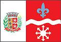 Bandeirapatro.jpg